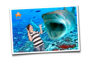Green Screen Souvenir Photography at Aquariums