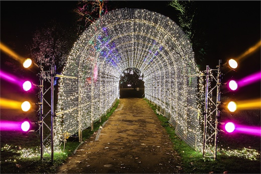 Kew Gardens - 019
