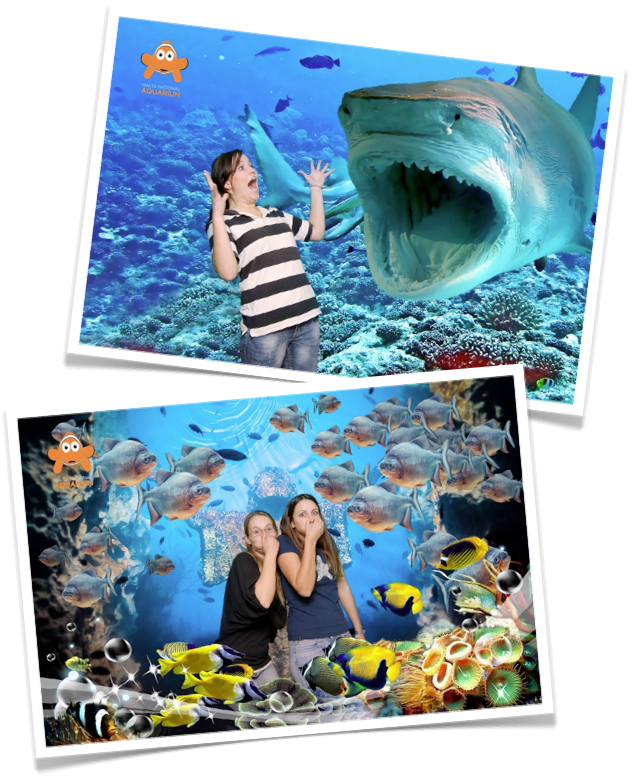 Aquarium Souvenir Photography using our Green Screen