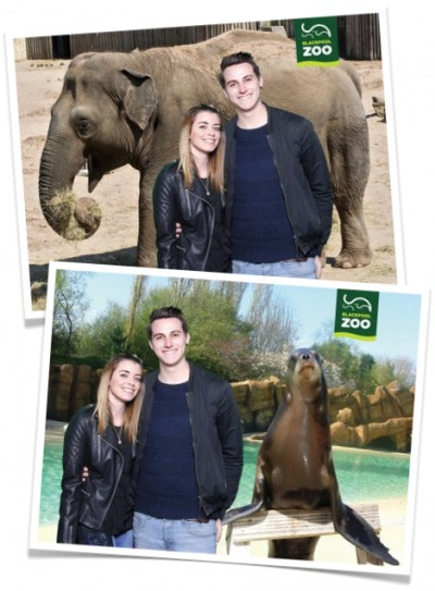 Green Screen photo solution at Blackpool Zoo