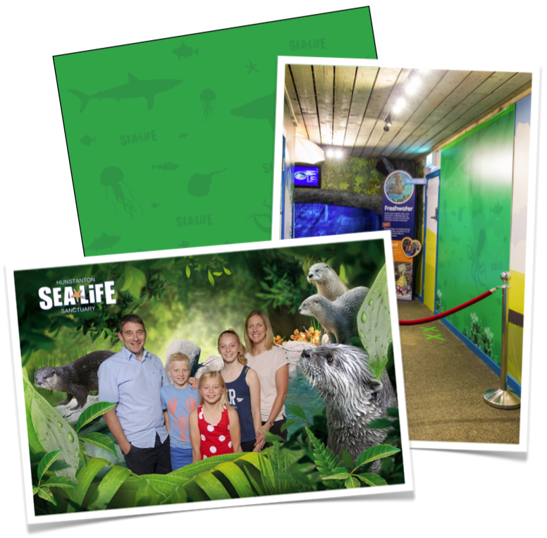 Bespoke green screen for Hunstanton Sea Life Sanctuary